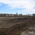 Newly cleared areas for pasture.